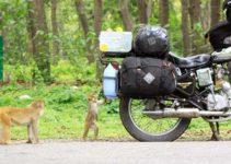 le migliori borse laterali moto