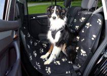 Miglior coprisedile auto per animali domestici
